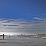 Jerker, Ocean Beach.jpg