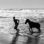 Ta mig till havet  (16).jpg